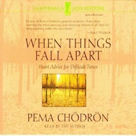 When Things Fall Apart (CD)