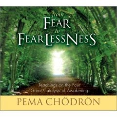 From Fear to Fearlessness (CD)
